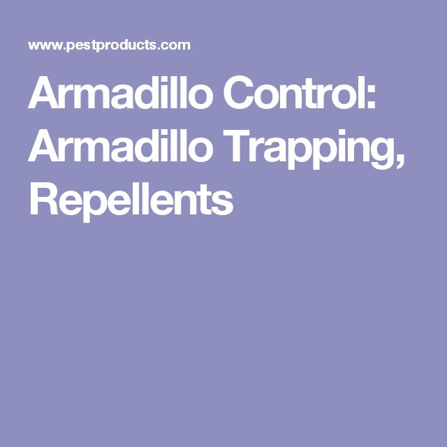 Armadillo Control: Armadillo Trapping, Repellents