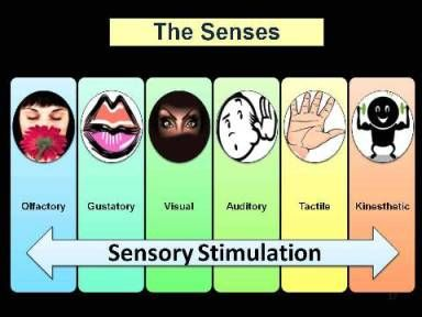 Sensory stimulation programs are one of the most common types of activities found in long-term care facilities. Simply stated, sensory stimulation is a technique that provides meaningful and common smells, movements, feels, sights, sounds, and tastes through the stimulation of all six senses. There are many benefits to providing sensory stimulation such as increased communication, environmental awareness, relaxation, cognitive stimulation, opportunity to build a rapport, enjoyment of a…