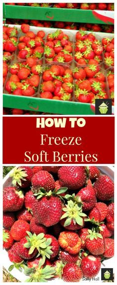 How To Freeze Soft Berries. A very simple and effective guide to freezing all the wonderful fruits when they're at their juiciest, ripest and cheapest! Very handy if you want a fruit pie in the Winter!