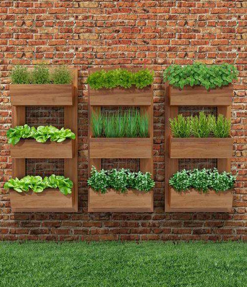 Balkon ve Teras Duvarları için Bahçeler