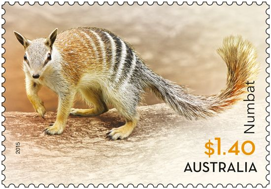 The Common Wombat, the Eastern Grey Kangaroo, the Koala, the Numbat, the Tasmanian Devil and the Short-beaked Echidna are all featured in the Native Animals stamp issue released today. Order in-store or online: http://auspo.st/1BViDZc #stampcollecting