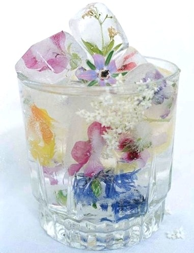 Borage and other edible flowers in ice