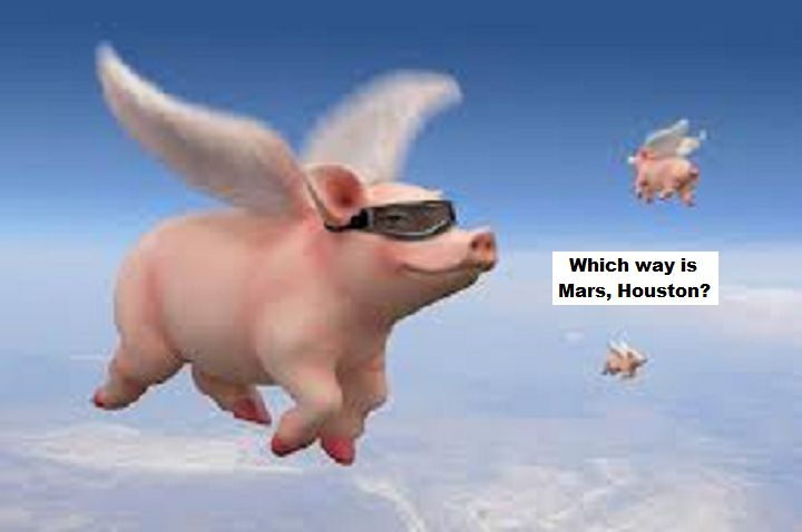 flying-pigs-which-way-is-mars-houston
