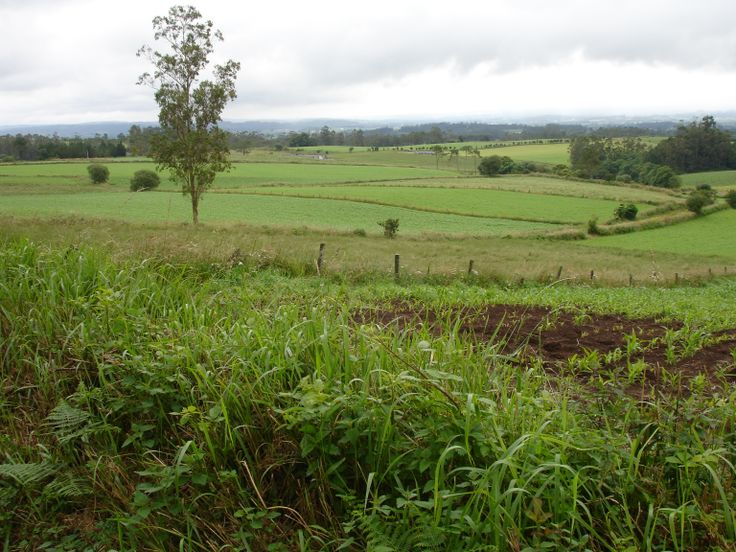Cultivos Galicia
