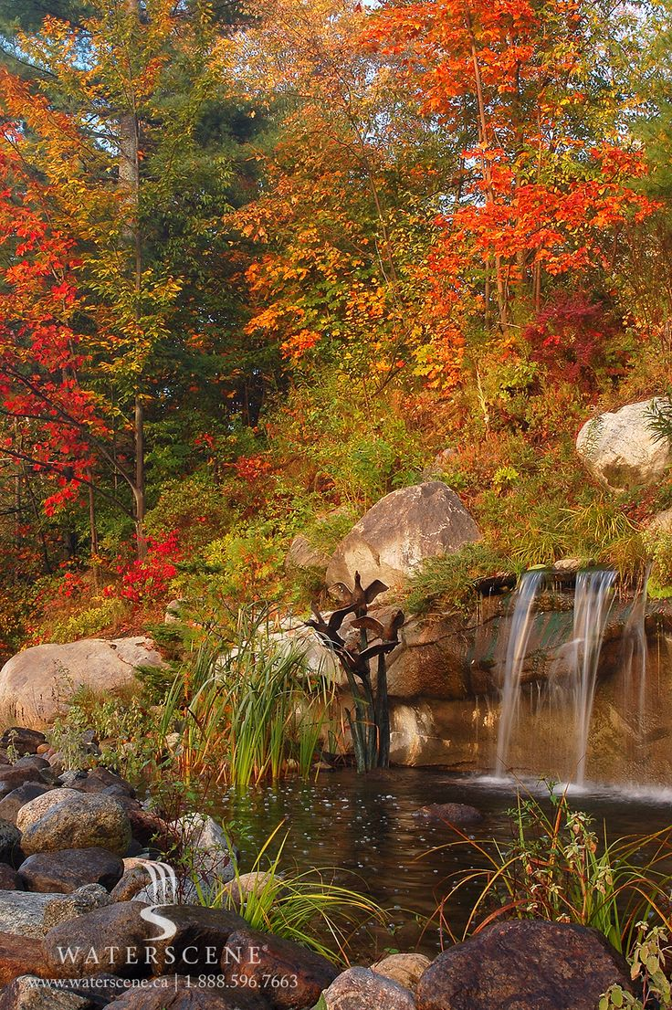 The beauty of autumn, enhanced by our Waterscene water feature.