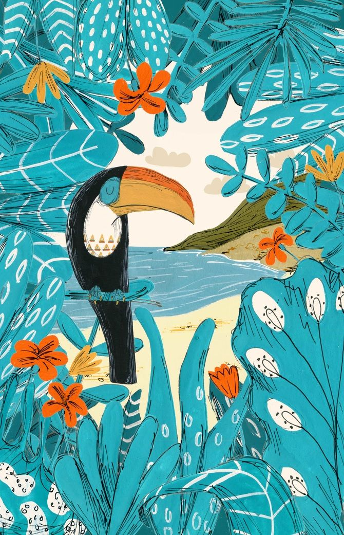 Toucan - Will Bonner