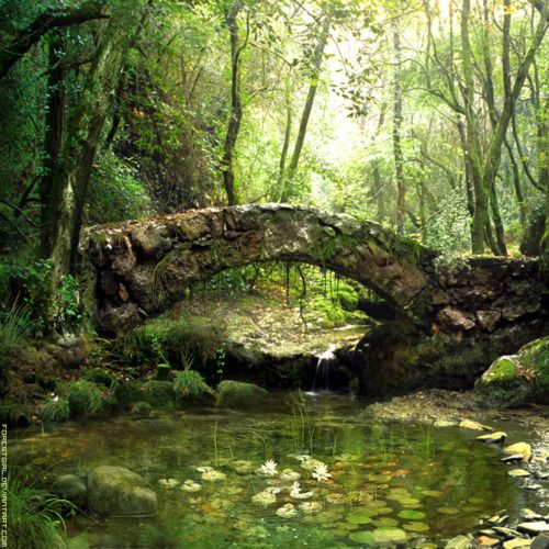 Peaceful scene. Old stone bridge over a stream in wooded setting via: Life is in everything beautiful