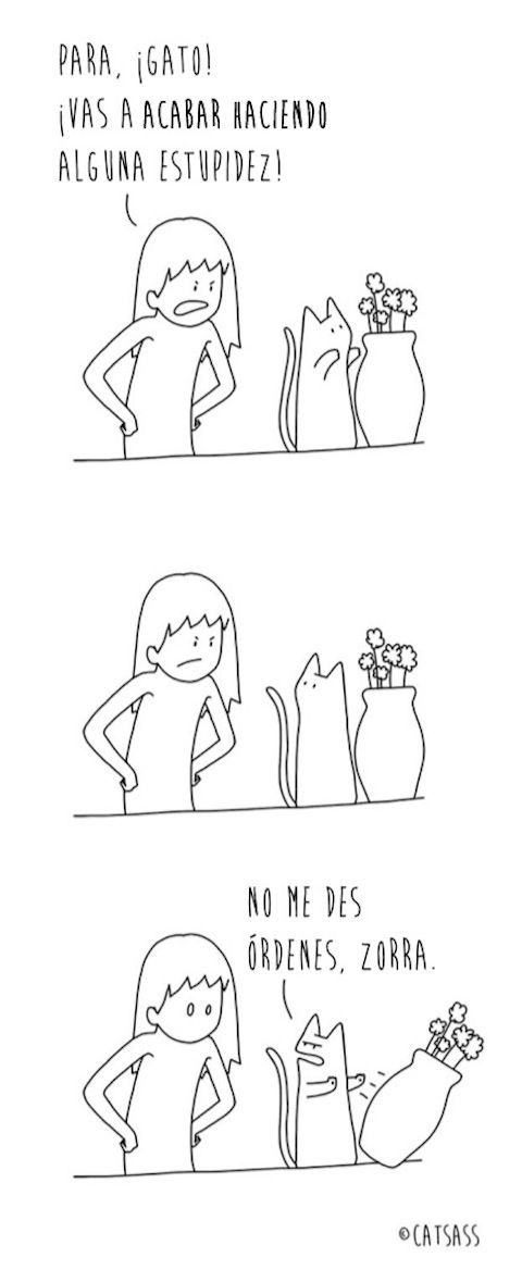 14 viñetas que muestran lo que realmente piensa tu gato de ti
