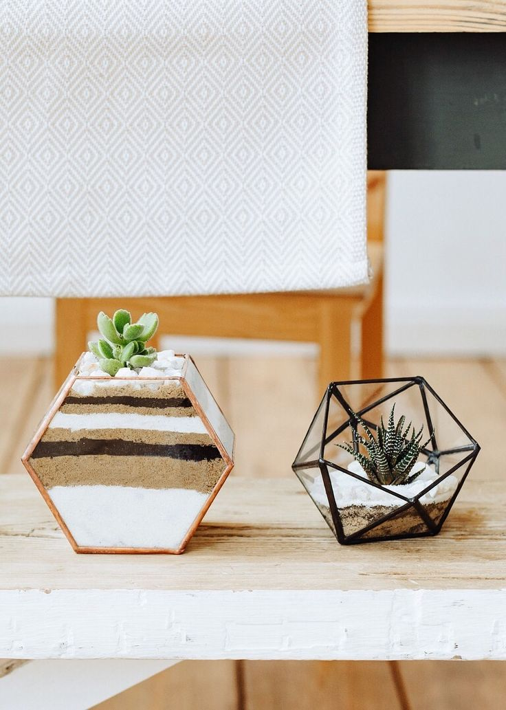 #tb #succulents #cacti #plants #oomf #vonvon #iger #tbt #f4f #fbf #tflers #igers #latepost #interior #interiordesign #design #home #hygge #aloe #homes …