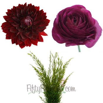 FiftyFlowers.com - DIY Dahlias and Ranunculus Combo Pack