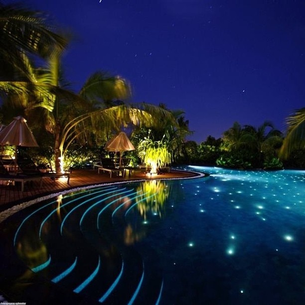 Luxury Pool House Night: 137 Best Images About POOLS!! On Pinterest