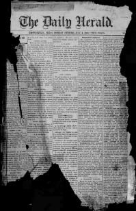 brownsville herald newspaper terms
