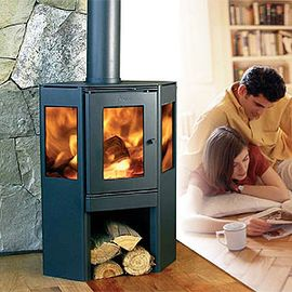 pellet fireplaces gallery   Fireplaces Cape Town