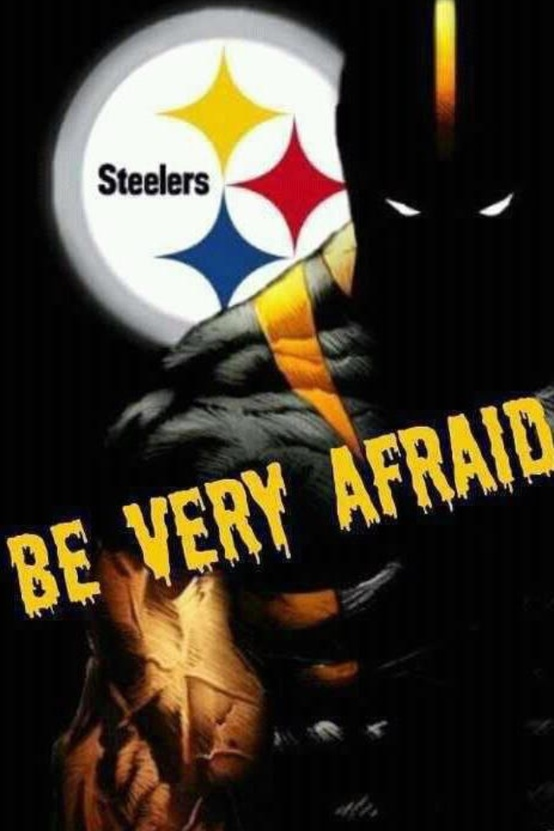 653 Best Pittsburgh Steelers Images On Pinterest