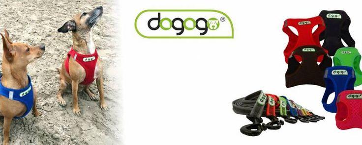 Robuuste lijnen en voorzien van een karabijnhaak die ervoor zorgt dat u uw hond snel aan de lijn kunt nemen. De lijnen zijn verkrijgbaar in verschillende lengtes: 1 t/m 10 lang, zijn gemaakt van stevig, nylon stof en de ingeweven rubberen laag zorgt voor extra veiligheid en comfort. De Air Mesh tuigen voor kleine honden omsluiten het hele borst gedeelte. Daarnaast beschikken de tuigen over een verstelbaar klittenband. Bij hitte kunnen de tuigen ook als airco voor uw hond worden gebruikt.