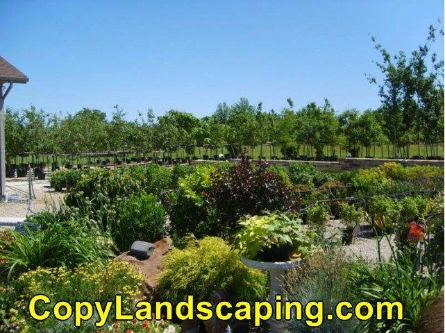 Excellent idea on  Pacific Coast Garden Landscape Center