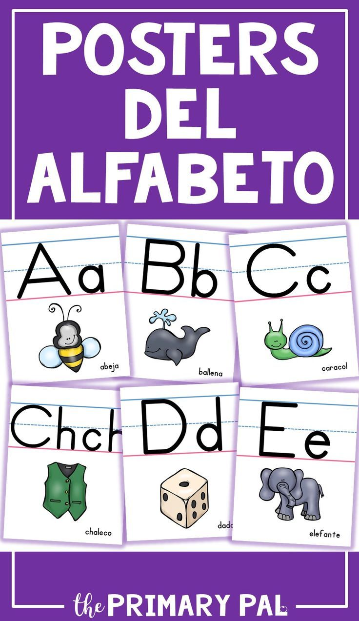 The Perfect Visual Alphabet For The Dual Language Bilingual Of Spanish Speaking Classroom Classroom Language Dual Language Classroom Spanish Alphabet [ 1273 x 736 Pixel ]