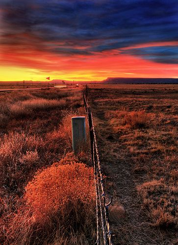 Fence line in a fiery New Mexico sunset...