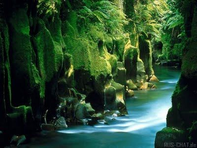 New Zealand - on my list of places to go