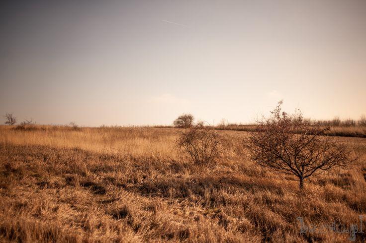 Filmowy kadr Skałek w Busku