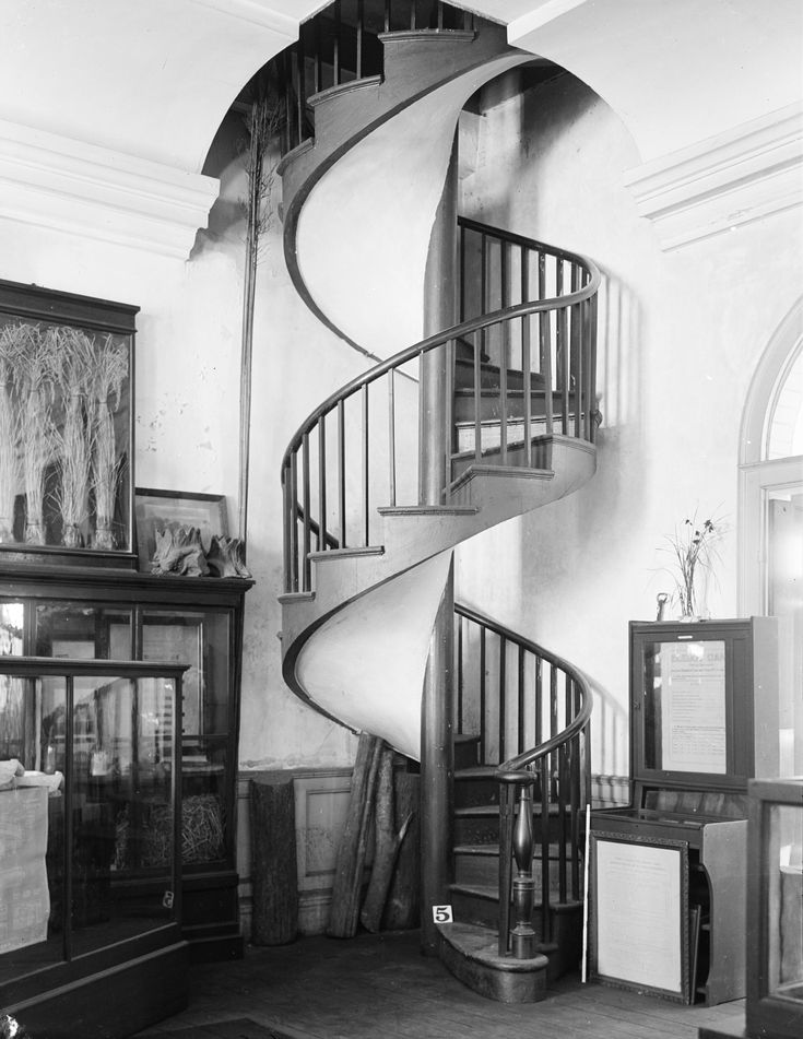 Best File Spiral Staircase In The Presbytere New Orleans 1934 640 x 480