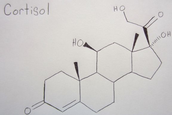 MoleCools_C Cortisol (C21H30O5) is a steroid hormone produced in the adrenal cortex and is critical for mediating your body's metabolic response to stress