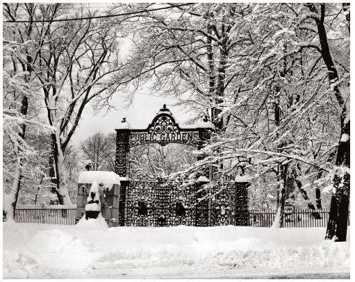 Halifax Public Gardens, 1940s.