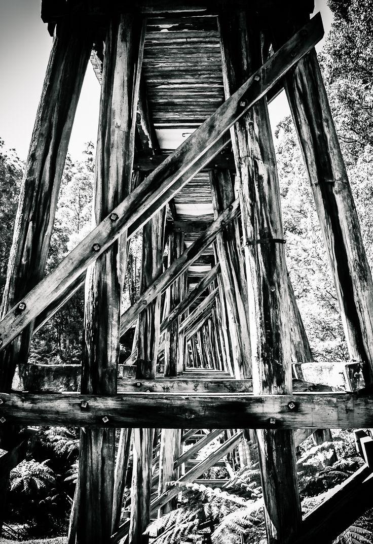Under the Line. Noojee Trestle Bridge, Vic Australia. © Gary Light. License: (CC BY-NC-ND 4.0)