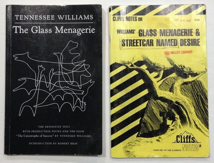 essays on the glass menagerie by tennessee williams Introduction of TOPIC