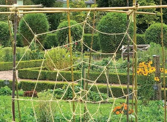 Les 25 meilleures id es concernant tuteurs de jardin sur pinterest art de jardin en m tal - Tuteur plante grimpante ...