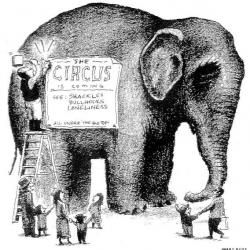 Animal Abuse Is Not Entertainment. Why you SHOULDN'T go to the circus.