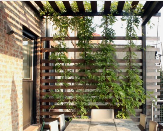 Wood Slat Pergola Privacy Side Home Outdoors