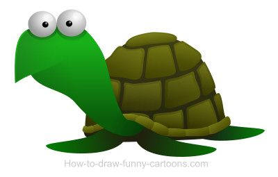 A nice cartoon turtle.