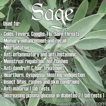 HOW WE USE SAGE: White Sage is in our Energetic Clearing Spray for the effect it has on clearing the energy around the body. http://turtlemoonhealth.com/collections/essential-oil-sprays/products/energetic-clearing-spray