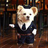 Hoopet fresco y lindo perrito ropa para perros y gatos perfecto para Halloween Fancy disfraz de mascota de Navidad