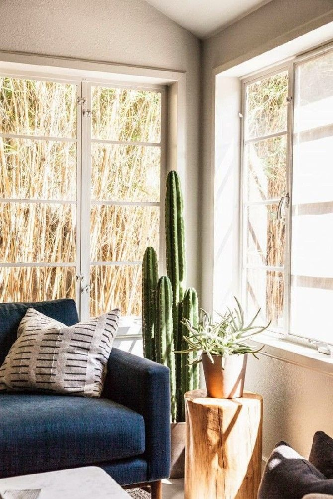 Summer Trends And Ideas For Living Rooms Cactus