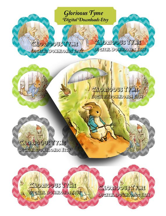 Birthday party Peter Rabbit digital download by GloriousTymes