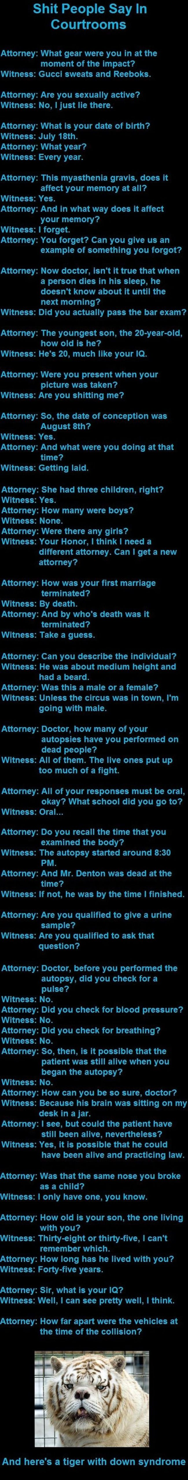 Funny things said in court...