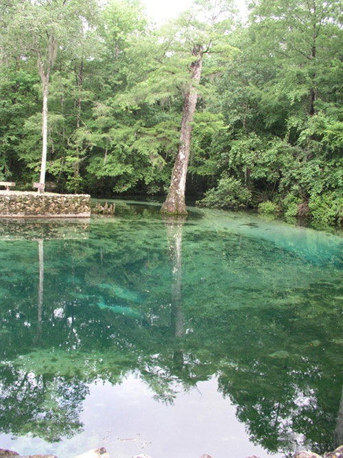 (Panhandle, Holmes County) Ponce de Leon Springs: Approximately 14 million gallons of pure water emerges daily from the Ponce de Leon Spring. Spring water emanates from the aquifer deep underground keeping it at a cool 68 degrees year round. Swimming and snorkeling are the main activities around the spring.