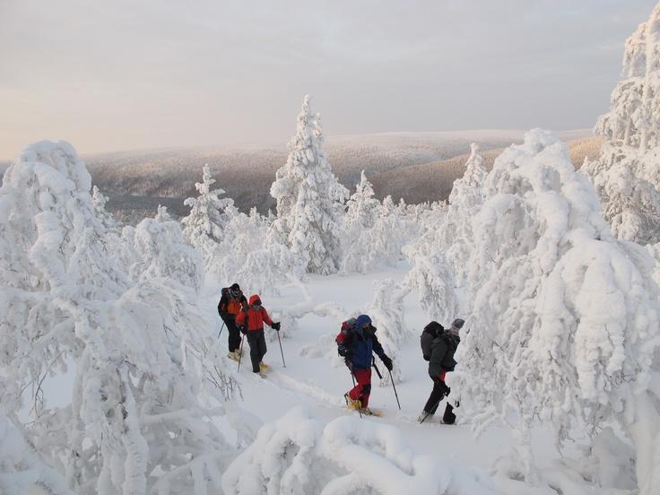 Invierno en Laponia
