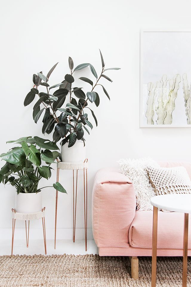 DIY copper plant stands mixed with a pale pink sofa and clean white walls