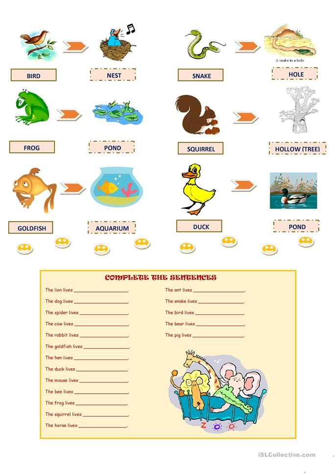 Animals And Their Homes English Esl Worksheets For Distance Learning And Physical Clas In 2020 Animals And Their Homes Cvc Words Kindergarten Elementary Math Lessons