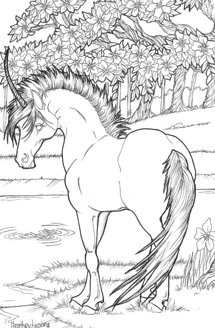 75 best unicorns to color images on pinterest coloring books