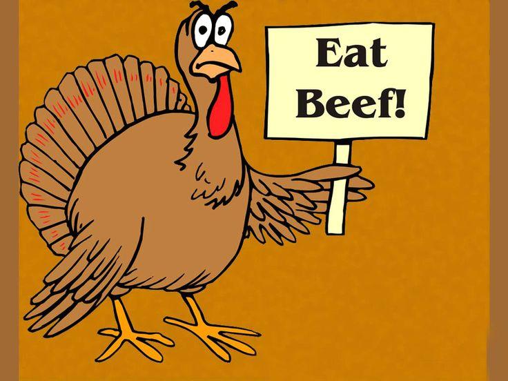 Best 25 Turkey jokes ideas only on Pinterest Thanksgiving jokes