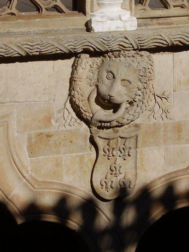 Escudo nobiliario Casa de las Conchas