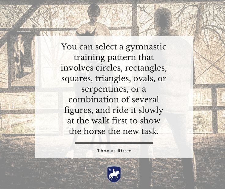 """You can select a gymnastic training pattern that involves circles, rectangles, squares, triangles, ovals, or serpentines, or a combination of several figures, and ride it slowly at the walk first to show the horse the new task."" - Thomas Ritter artisticdressage.com"
