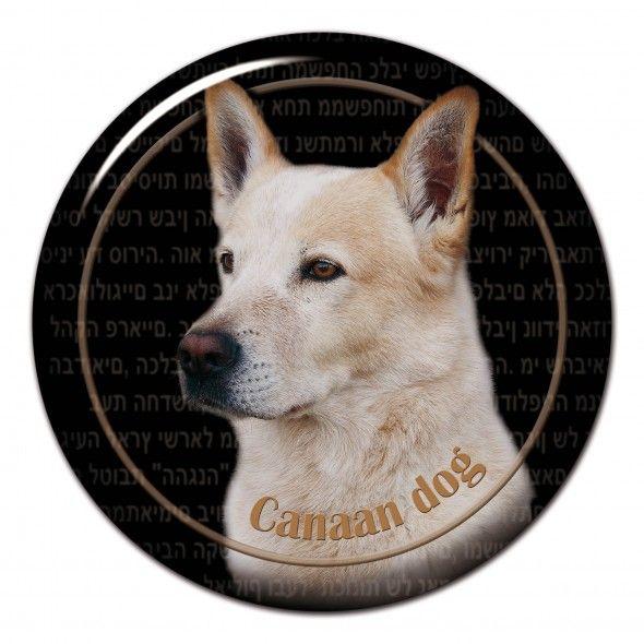 Canaan Dog 3D sticker - #canaandog