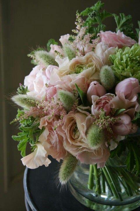 Soft color bouquet with bunny tails. Yukinobu Fujino