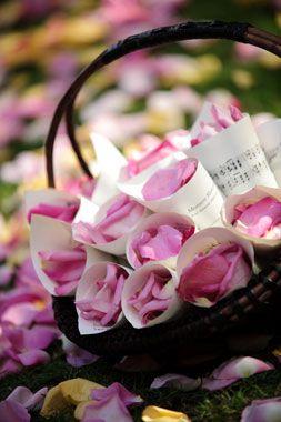 flower cones for petals