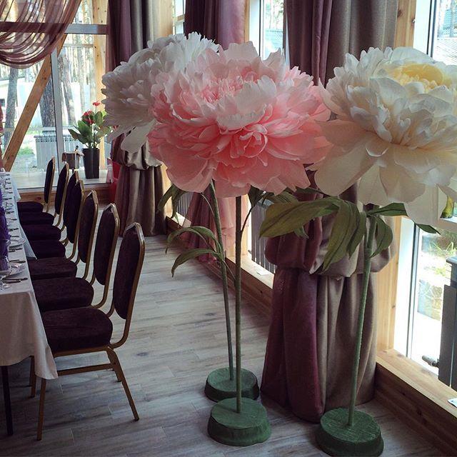 Аренда пионов для вашего праздника #большиецветыизбумаги #декор #пионы…